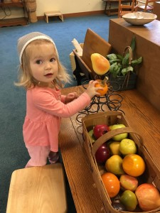 Young child sorting fruit